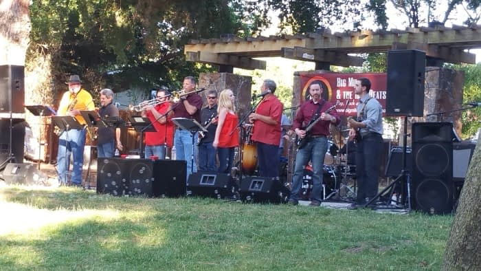 Band - Almaden Music in the Park 2017