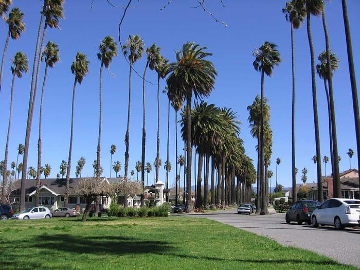 Palm Haven neighborhood in Willow Glen